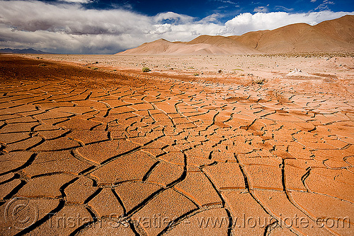 cracked mud - dry desert, altiplano, argentina, cracked mud, drought, dry mud, dry spell, noroeste argentino, pampa