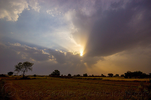 crepuscular rays - evening sky with clouds and sun rays over fields (india), cloudy, crepuscular rays, fields, india, sun rays through clouds