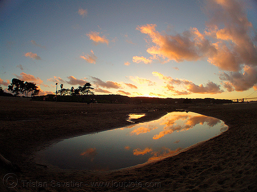 crissy field beach at sunset (san francisco), clouds, crissy field, fisheye, reflection, sunset, water