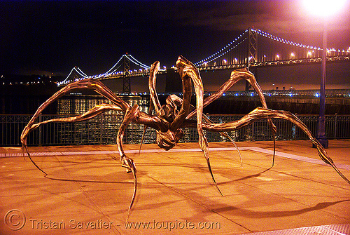 crouching spider by louise bourgeois (san francisco), bridge, crouching spider, louise bourgeois, night, sculpture