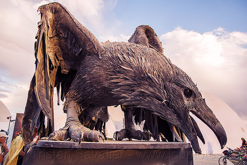 crow sculpture - burning man 2016, art, black bird, burning man, crow, raven, sculpture