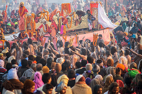 crowd of hindu devotees around guru's float - kumbh mela (india), crowd, float, hindu, hinduism, kumbh maha snan, kumbha mela, maha kumbh mela, mauni amavasya, men, naga babas, naga sadhus, naked, procession, triveni sangam
