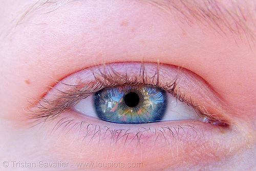 crystal's eye, close up, crystal, eye color, eyelashes, iris, macro, pupil, right eye, woman
