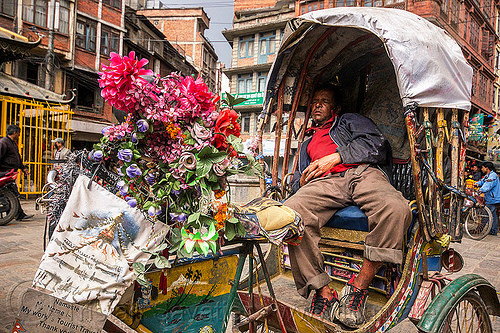 cycle rickshaw driver napping - kathmandu (nepal), flowers, man, people, sleeping