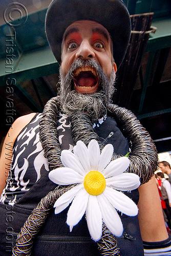 daisy flower - steven raspa, bears, festival, how weird festival, man, people
