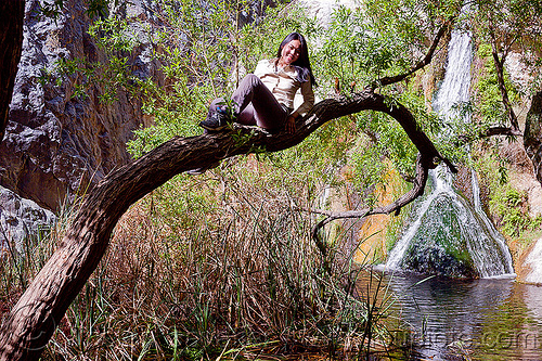 darwin falls waterfall (death valley), darwin falls, death valley, tree, waterfall, woman