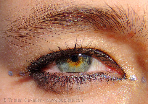decon's beautiful eye!, close up, eye color, eyelashes, iris, macro, pupil, right eye, shaina, woman