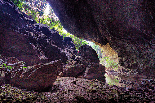 deer cave - mulu (borneo), backlight, cave mouth, caving, deer cave, garden of eden, gunung mulu national park, jungle, natural cave, rain forest, spelunking, trees, water