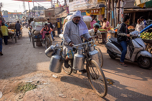 doodh-wallah on bicycle - milkman (india), bicycle, bike, carrying, doodh-wallah, india, metal milk containers, milk man, riding, street market, transporting, transpoting, varanasi
