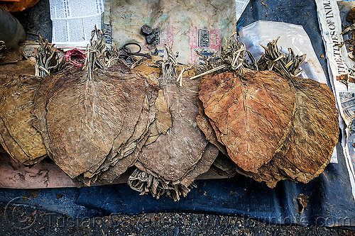 dried tobacco leaves (india), dried, gairkata, india, stall, street market, tobacco leaves, west bengal