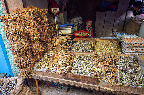 dry fish market - darjeeling (india), bundled, bundles, darjeeling, dried fish, dry fish, eggs, fishes, india, man, merchant, shop, stall, store, vendor
