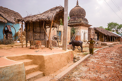 earthen floor and steps in indian village, adobe floor, cow, earthen floor, house, india, khoaja phool, monument, shrine, village, water buffalo, woman, खोअजा फूल