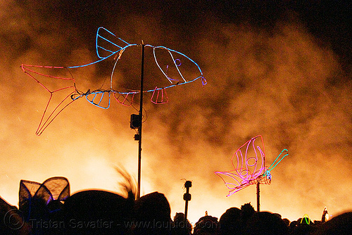 EL-wire art - fish - butterfly, art, burning man, butterfly, el-wire, fire, fish, flames, night, smoke