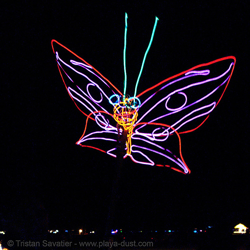 EL-wire butterfly - burning-man 2006, burning man, el-wire, electroluminescent wire, glowing, night