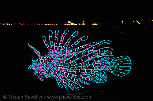 EL-wire fish - burning-man 2006, burning man, el-wire, electroluminescent wire, fish, glowing, night, unidentified art