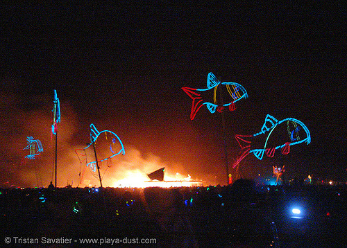 EL-wire fishes - burning-man 2005, art, burning man, el-wire, electroluminescent wire, fire, fishes, flames, night
