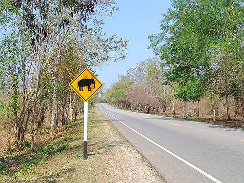 ช้าง - elephant crossing road sign - thailand