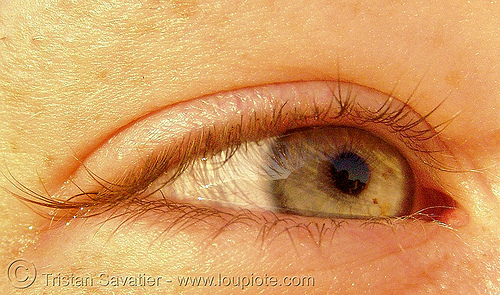 emily's eye, close up, eye color, eyelashes, iris, macro, psy trance, pupil, right eye, woman