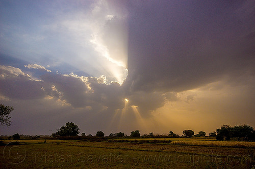 evening sky with crepuscular rays - clouds and sun rays over fields (india), clouds, cloudy, crepuscular rays, fields, sun rays