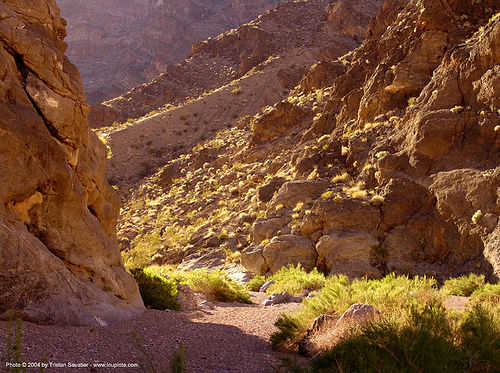 fall canyon (death valley), death valley, desert, fall canyon