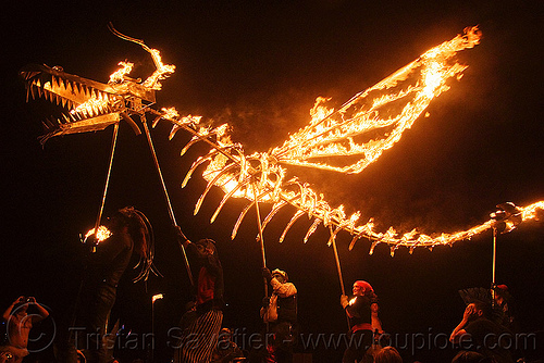 fire dragon - burning man 2009, burning man, fire dragon, flame, night, shiva vista, wings
