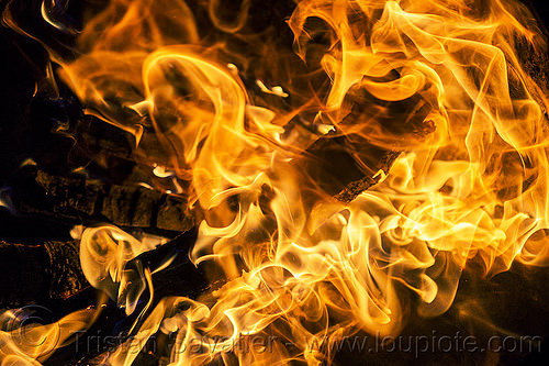 fire - flames - wood burning in fire pit, bonfire, burning, fire pit, flames, night, patterns, wood fire