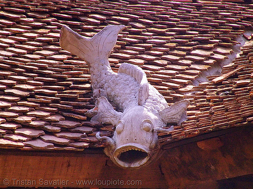 fish decoration on roof - vietnam, cat ba island, chinese, cát bà, decoration, fish, red, roof, tiles