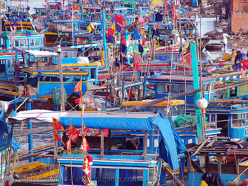 fishing trawlers in harbor - phan thiet - vietnam, colorful, fishing boats, fishing trawlers, harbor, mooring, phan thiet, vietnam