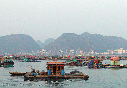floating houses (cat ba island, vietnam), boat, cát bà, floating homes, floating village, halong bay, sea