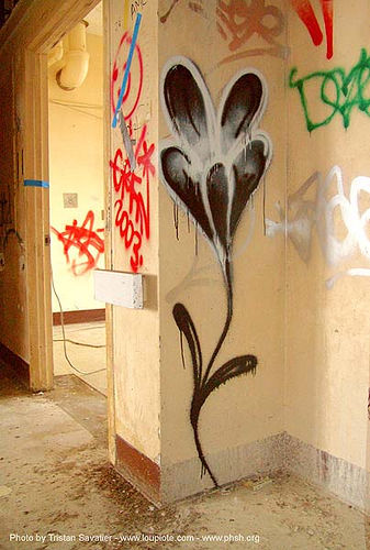 flower graffiti - public health service hospital (PHSH) - san francisco, abandoned building, abandoned hospital, graffiti, lolo, presidio hospital, presidio landmark apartments, trespassing