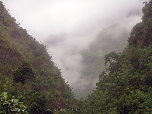 foggy valley on the way to Tám Sơn - vietnam, fog, foggy, valley