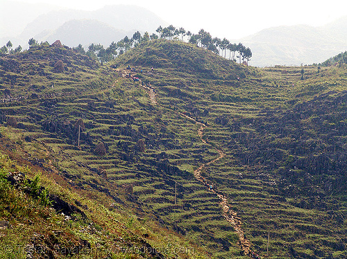 foot trail near Mèo vac - vietnam, mèo vạc, terrace farming, terraced fields, vietnam