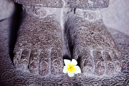 frangipani flower offering at feet of hindu deity statue - prambanan (java), archaeology, brahma, candi prambanan, feet, flower, frangipani, hindu temple, hinduism, indonesia, jogja, offering, plumeria, ruins, sculpture, statue, yogyakarta