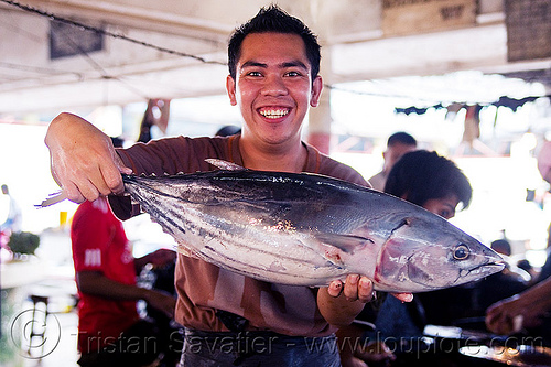 fresh tuna fish, fish market, fishes, lahad datu, man, merchant, tuna, vendor