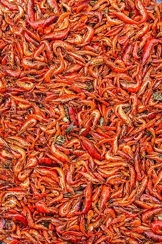 freshwater prawns (india), freshwater prawns, freshwater shrimps, gairkata, river prawns, river shrimps, street market, west bengal