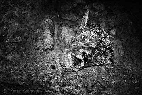 gargoyle - catacombes de paris - catacombs of paris (off-limit area), broken, catacombs of paris, cave, gallery, gargoyle, head, trespassing, tunnel, underground quarry