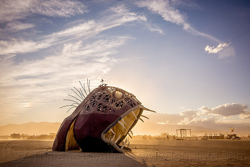 giant fish monster - illumacanth - burning man 2015, art installation, clouds, deep sea fish, illumacanth, sculpture, teeth