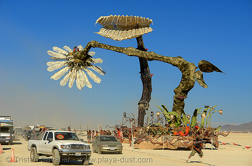 giant flowers at the burning man festival, abundant sugar, art car, cars, dolab, fear trap, giant flower, hope flower, miracle grow, patrick shearn, venus fly trap