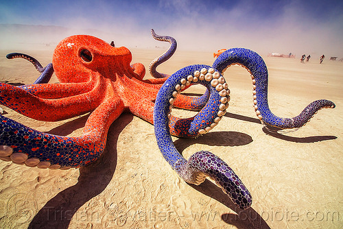 giant octopus - octavius - burning man 2016, art installation, burning man, ceramic, giant octopus, mosaic, octavius, sculpture, tentacles