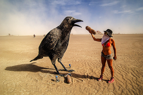 giant raven bird - don't feed wild life - burning man 2016, art installation, burning man, feeding, giant bird, giant crow, giant raven, hat, peanut, sculpture, woman