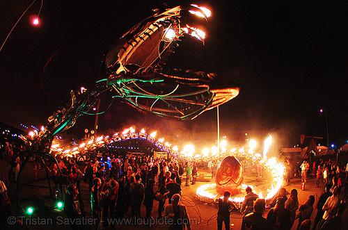 giant snake skeleton sculpture - head - crucible fire arts festival 2007 (oakland, california) - serpent mother, burning, fire art, fisheye, sculpture, serpent mother, skeleton, snake