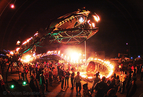 giant snake skeleton sculpture - head - crucible fire arts festival 2007 (oakland, california) - serpent mother, art, burning, fire art, fisheye, flames, flaming lotus girls, the crucible