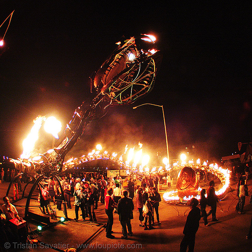 giant snake skeleton sculpture - head - crucible fire arts festival 2007 (oakland, california) - serpent mother, burning, fire art, fire arts festival, fisheye, flames, flaming lotus girls, giant, sculpture, serpent mother, skeleton, snake, the crucible