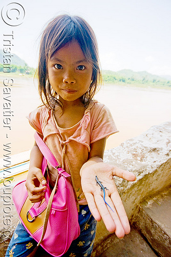 girl playing with small blue-tail lizard (laos), blue-tail, blue-tailed, child, girls, hand, kid, little girl, lizard, luang prabang, mekong, pak ou caves temples, people, reptile, river