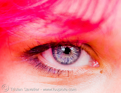girl with pink hair - gay pride (san francisco), close up, eye color, eyelashes, gay pride 2008, gay pride festival, iris, pink hair, woman