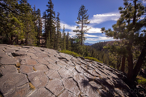 glacial striations on basalt columns - devil's postpile (california), columnar basalt, devil's postpile, eastern sierra, erosion, forest, geology, glacial polish, lava, lava flow, rock formation, trees, volcanic
