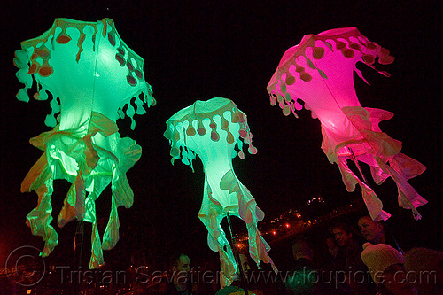 glowing jellyfishes - billion jelly bloom, billion jelly bloom, bjb, glowing, jellyfishes, night, performance art