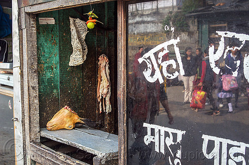 goat head - meat market - darjeeling (india), butcher, chili, darjeeling, goat head, goat meat, india, meat market, meat shop, mutton, painted, pepper, raw meat, severed head, store, window