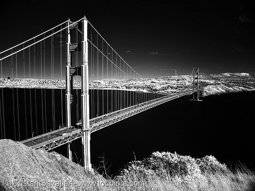golden gate bridge, black water, bridge pillar, bridge tower, daylight infrared, golden gate bridge, near infrared, suspension bridge