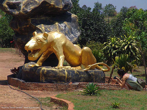 golden tiger - hindu park near phu ruea, west of loei (thailand), golden color, hindu, hinduism, thailand